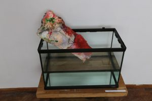 Findings - Quintessence - 2014 - painted plaster, canvas, glass aquarium and water